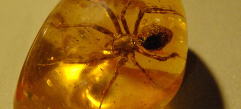 Почему янтарная кислота помогает на похмелье?